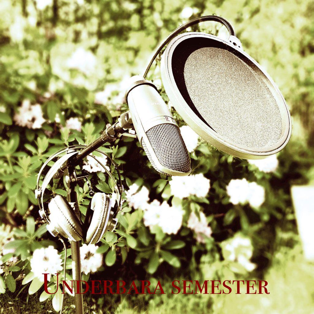 Underbara semester_Fotor 1