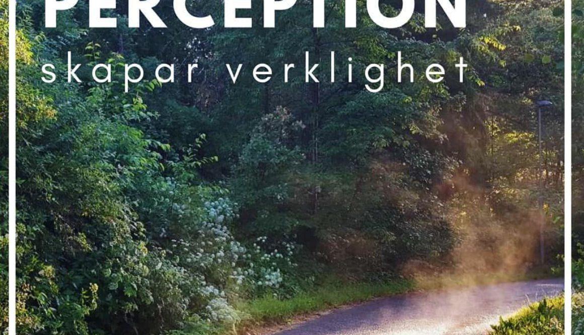 Tänkvärt: Perception